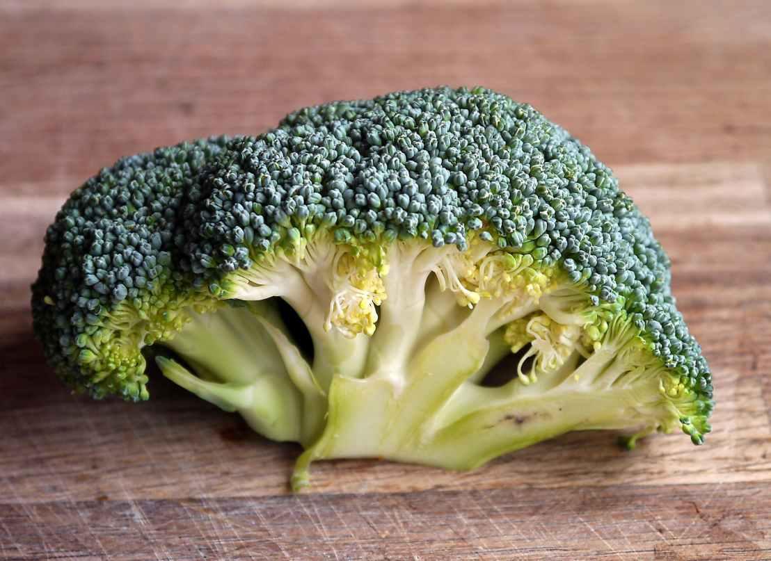 broccoli-vegetable-food-healthy-47347