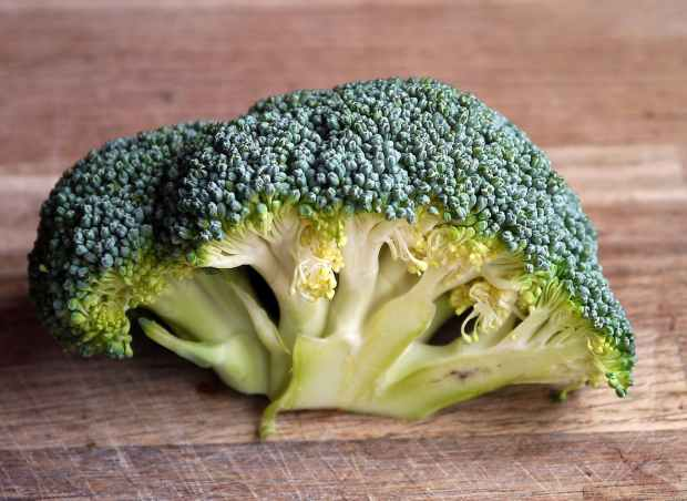 broccoli-vegetable-food-healthy-47347