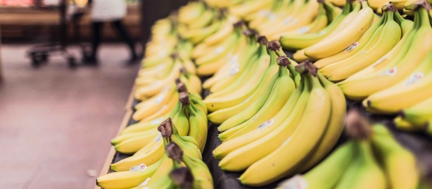 fruits-grocery-bananas-market.jpg