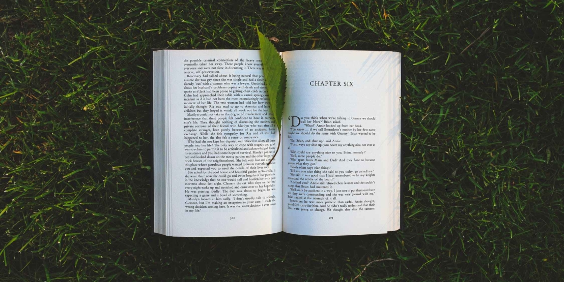 nature-grass-leaf-green1