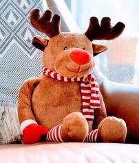 Reindeer (pl - reindeer)