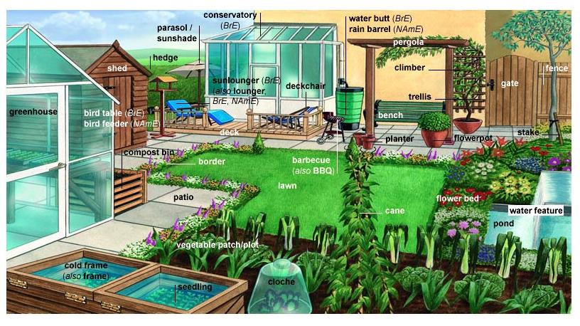 Garden-Vocabulary.png